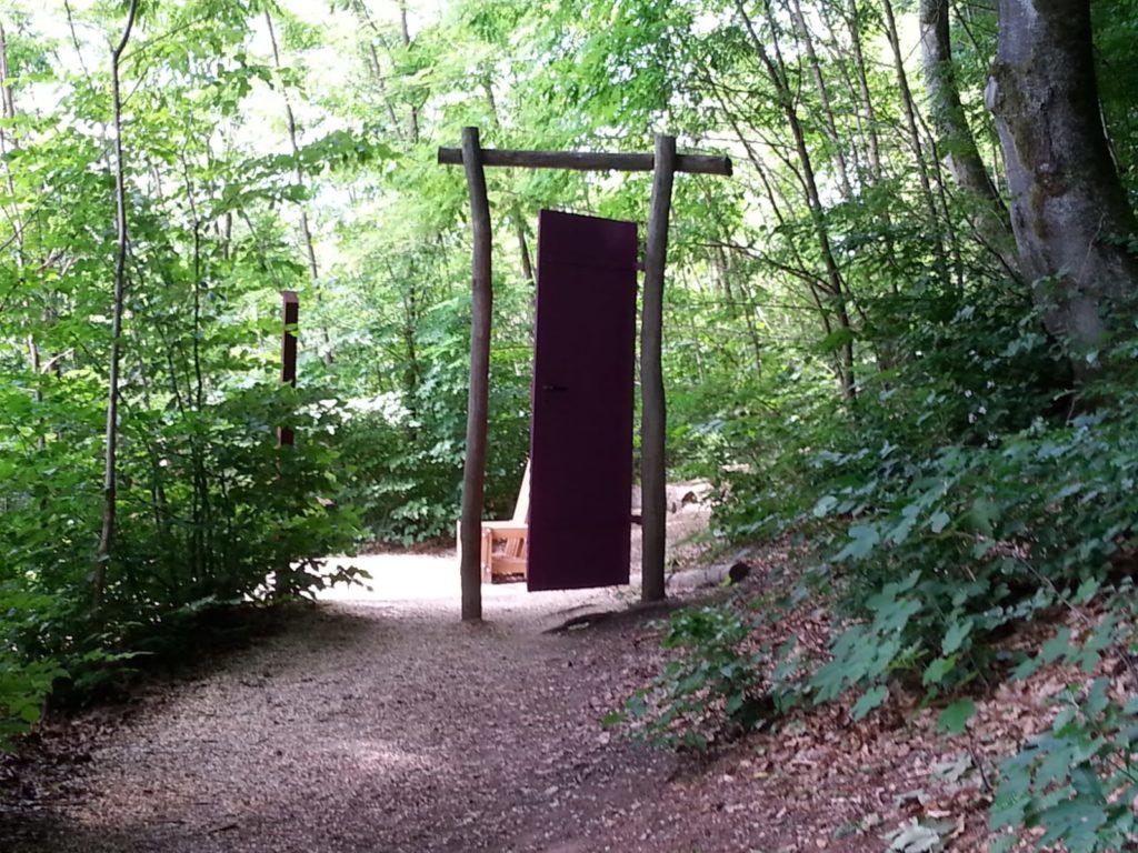 Stressbewältigung mit Waldbaden in Kehl-Hanauerland