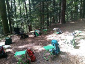 Waldbaden Shinrin Yoku Ausbildung im Wald