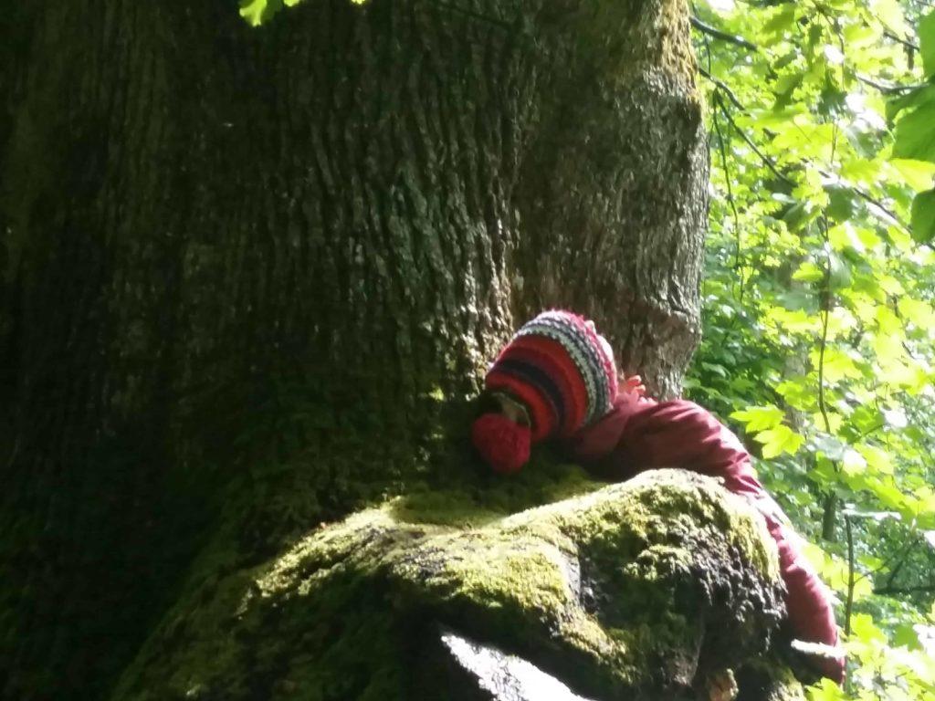 Naturtherapie Ausbildung - Entspannung pur!
